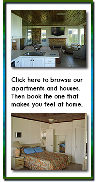 click here to browse our apartments and houses. Then book the one that makes you feel at home.