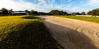 Golf Courses in Venice and Nokomis