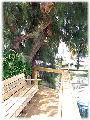 This shady bench resides on our new dock by the Sarasota intracoastal waterway.