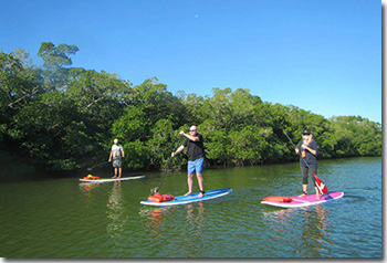 Stand Up Paddleboard Nokomis
