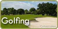 Golf Courses in Venice and Nokomis